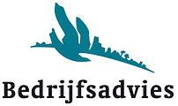 Bedrijfsadvies_logo_2010.jpg