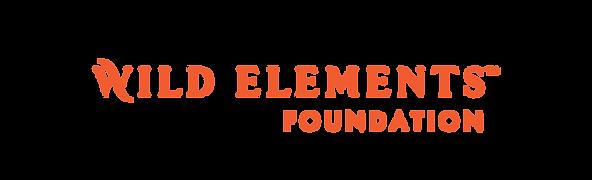 Wordmark_Foundation_Orange.png