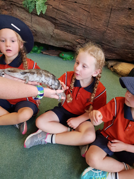 Stage 1 Western Plains Zoo Excursion