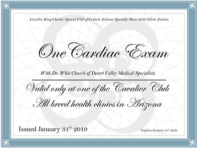 heart exam certificate.jpg