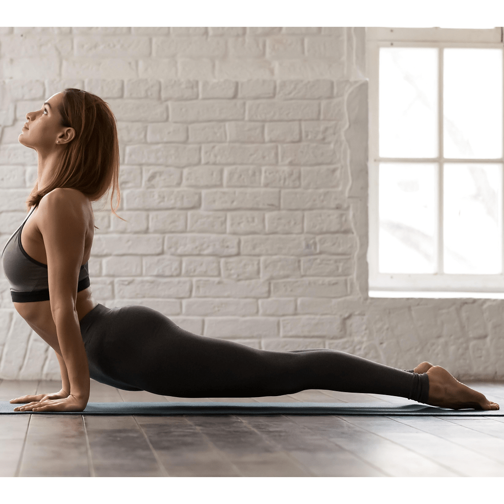 Upward-Facing Dog Pose (Urdhva Mukha Shvanasana)