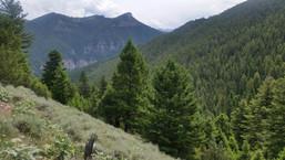 Proposed Addition Spanish Peaks - George Wuerthner