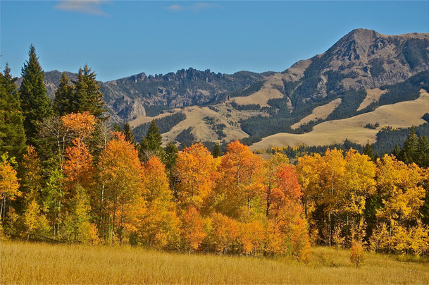 Gallatin Range in the Fall - Howie Wolke