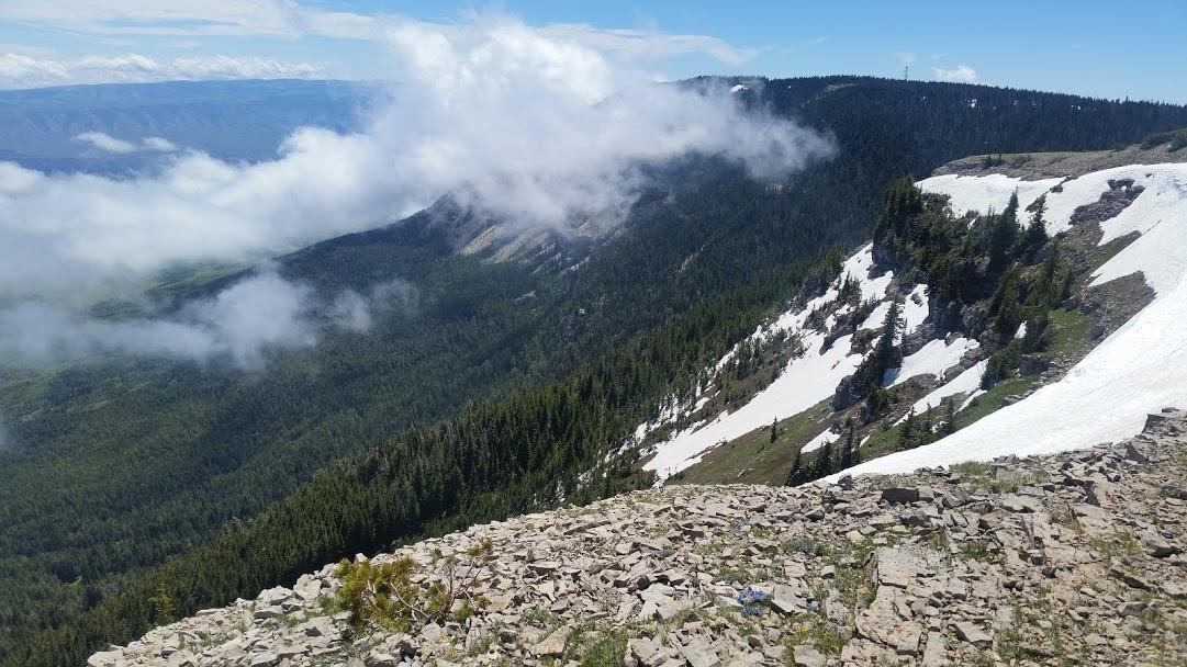 Pryor Mountains - Pryor Mountains - George Wuerthner
