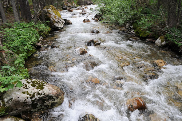 Spanish Creek - George Wuerthner