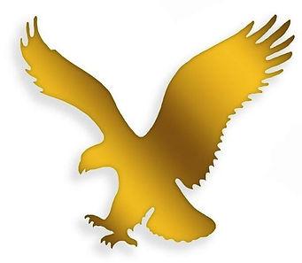 Gold eagles.JPG