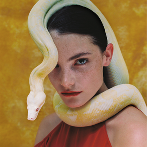 Claire Laffut: Pop Modèle