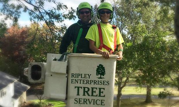 Ripley Tree Service, Certified Arborist