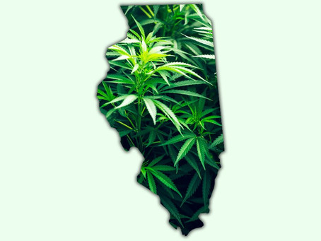 As Illinois is set to legalize adult-use sales in just 12 days, which companies are best positioned?