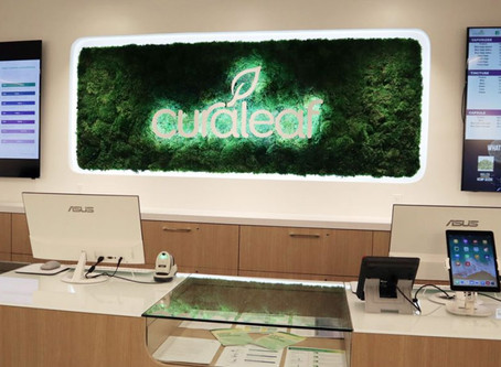 Curaleaf Opens 30th Florida Dispensary in Tampa
