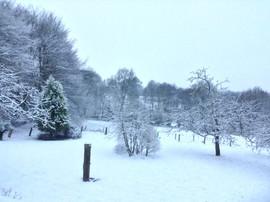 Le Bois Ellier Winter Snow