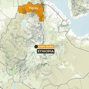 What's causing the crisis in Tigray - and what happens next?