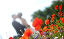 PHOTOGRAPHE MARIAGE AIN 01 - PHOTYS 003 (Sides 5-6)