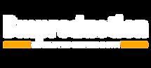 logo variant 1.png