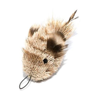 Da Feather Fin Fish