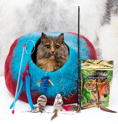 Trust Us Cat Cave Fun Pack