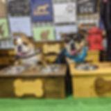 homeward hound.jpg