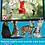 Thumbnail: Cat Dreams DVD