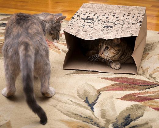 Feline Fun Bag
