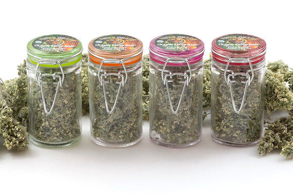 Tiger Grass Catnip Small Buds Glass Jar