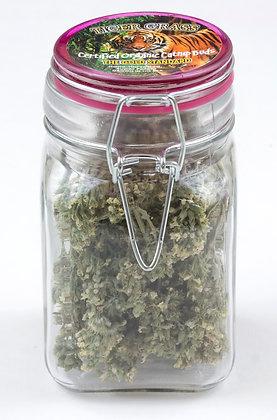 Tiger Grass Catnip Large Buds Glass Jar