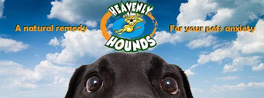 heavenly hounds.jpg