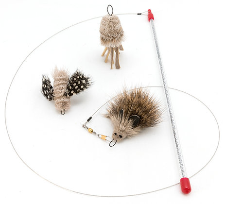 GO CAT Da Moth, Mushroom, and Hedgehog Cool Cat Pack
