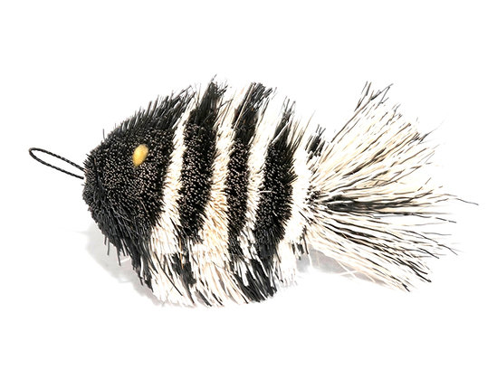 Da Zebra Fish
