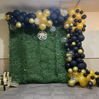 Balloons Garland and green backdrop