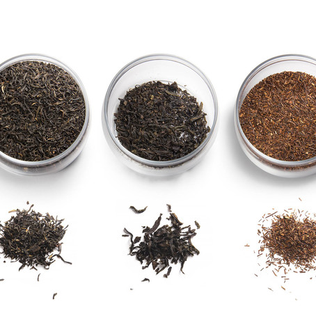 Why is White Tea extract beneficial for your Skin?