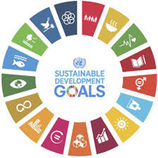 SDGs Open Space - Level Up Project Discovery