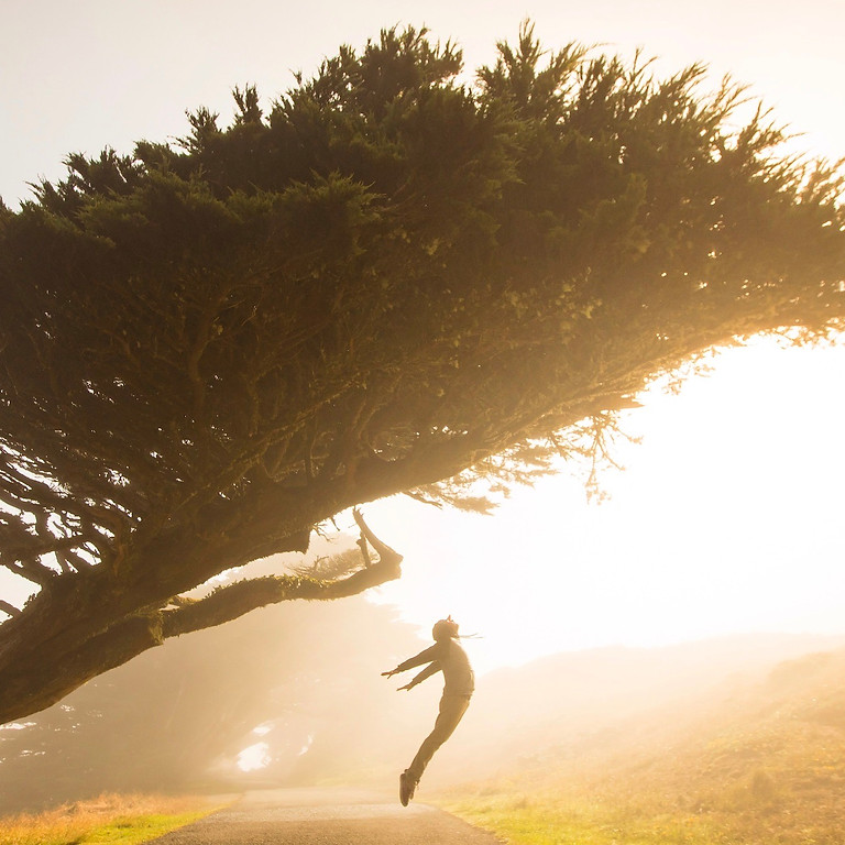 Evolving your career possibilities in changing landscapes