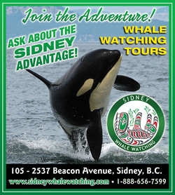 Sidney Whale Watching