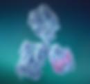 TRX molecule.PNG