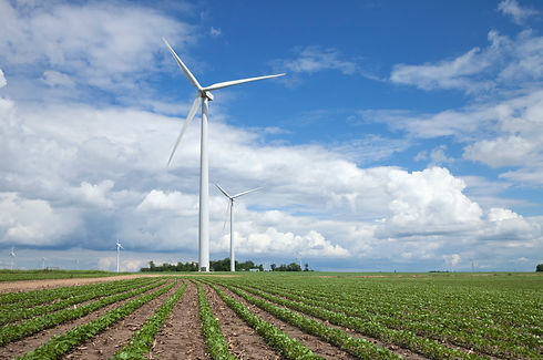 wind-turbines-and-soybean-fields-in-midw