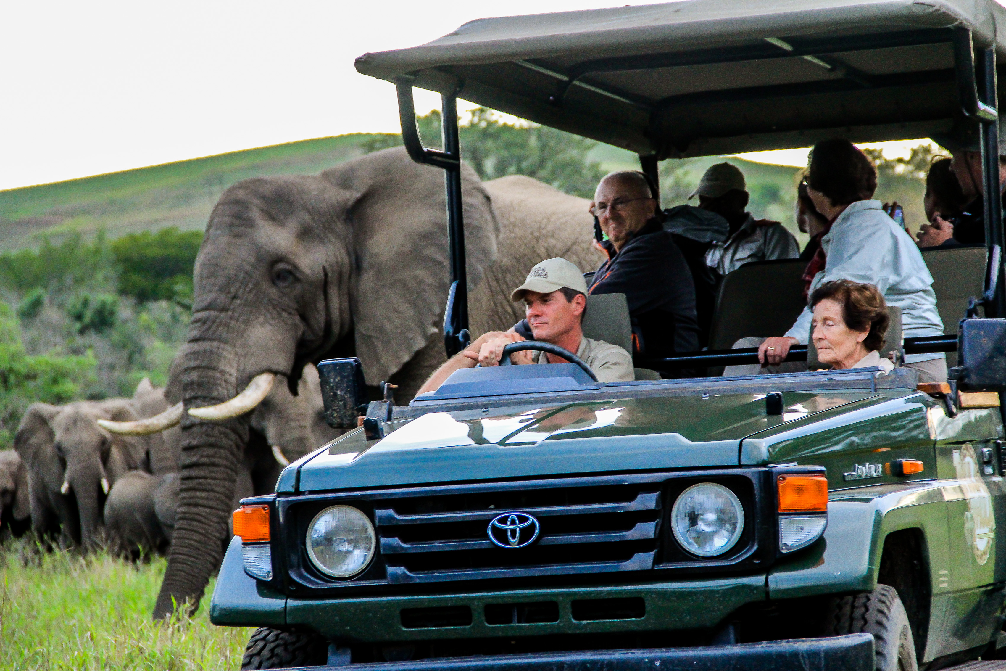 Game drive 24 Nov 2015 HR-18