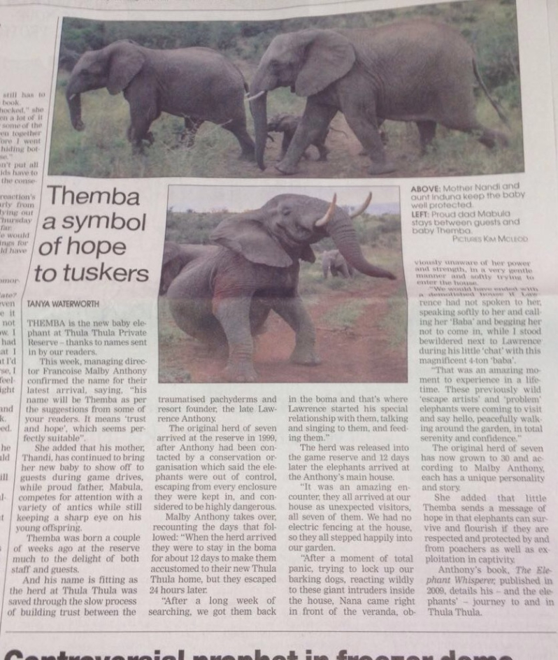 Themba article-baby-elephant-June-2016-1-798x944