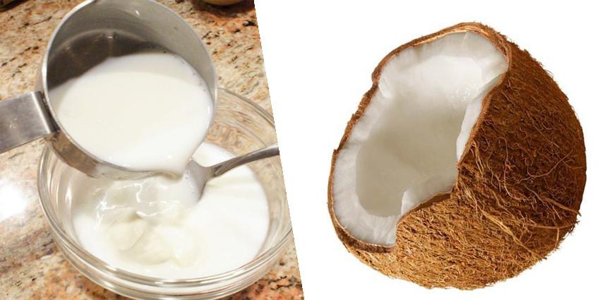 ¿Qué es el yogur de coco?