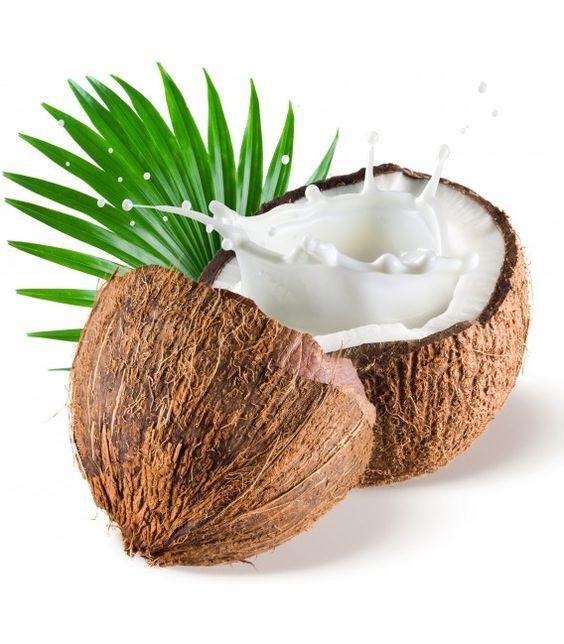 El Coco, sus diversos usos y productos