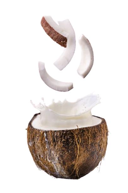 Vitaminas del Coco y sus beneficios