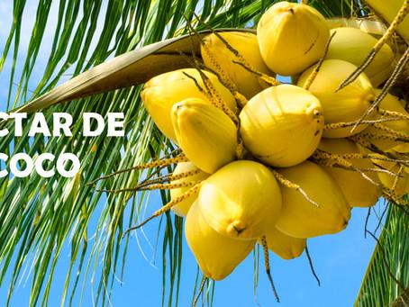 ¿Qué es el Néctar de Coco?