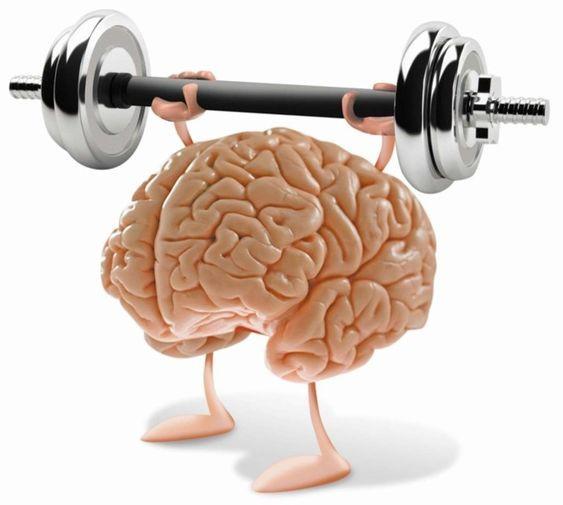 El ayuno intermitente estimula la función cerebral