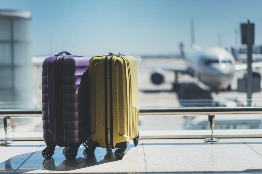 Vacation Luggage Airplane EverAfter Travel Agency