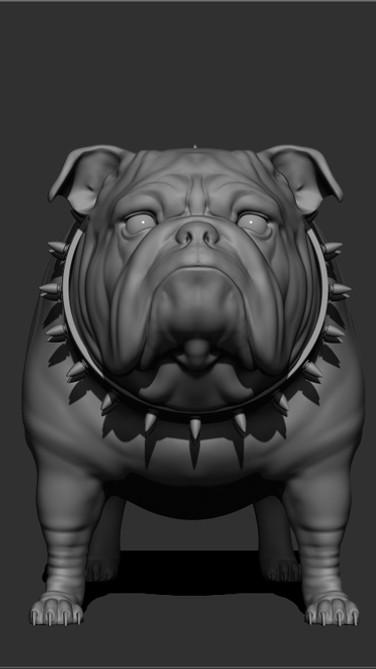 jthomas_Bulldog.jpg