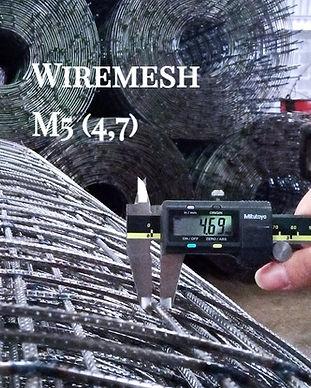 WM M6 Roll 47