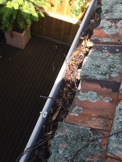 Importance of a gutter clean?