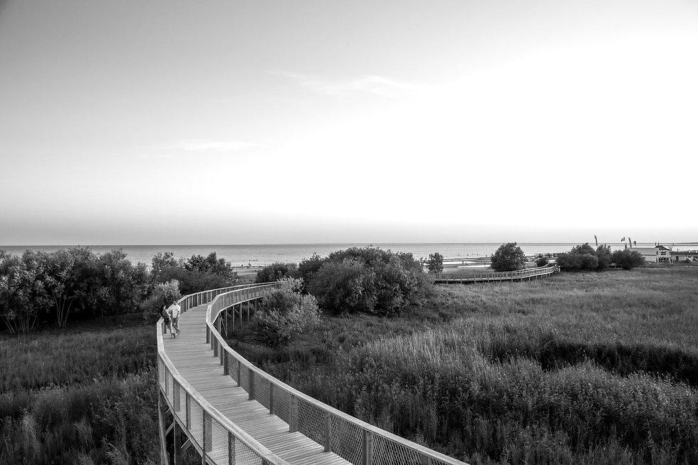 Pärnu coastal meadow hiking trail_Eiliki