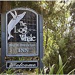 Lost Whale Inn Sign
