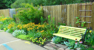 A different view of Shawna's Guerrilla Garden
