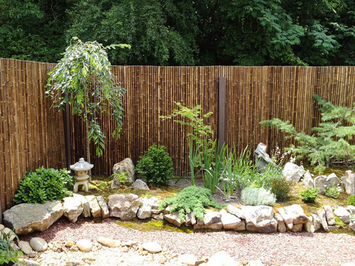 How to Instantly Transform Any Outdoor Space Into a Gorgeous Bamboo Oasis